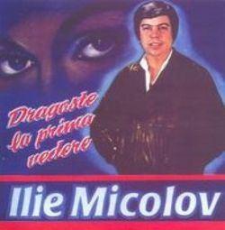 Ilie Micolov