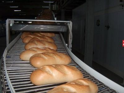 econ.paine
