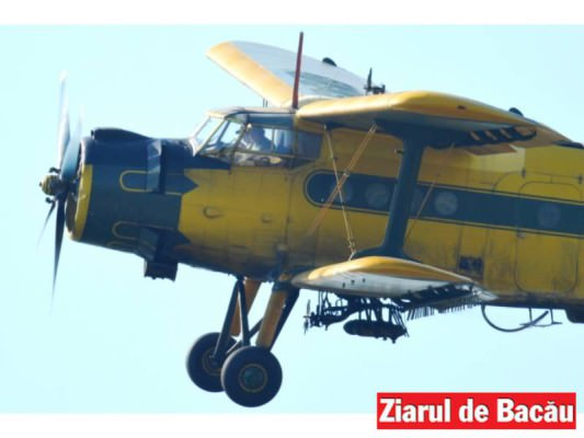 Even.avio20