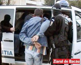 Rețea de traficanți de canabis, descoperită de DIICOT la Bacău