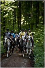 Concursul de anduranţă ecvestră Hemeiuş 2015 va avea loc pe 9 mai