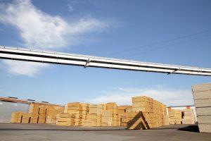 Holzindustrie Schweighofer luptă împotriva tăierilor ilegale printr-un plan de acțiune pentru o industrie sustenabilă a lemnului