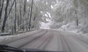 23 de localități din județul Bacău nu au energie electrică – UPDATE