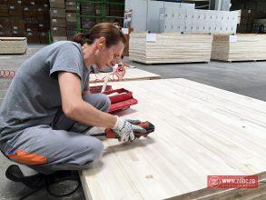 FOTO – Fostul CPL Comănești s-a transformat în cea mai mare fabrică de panel din lume. De unde cumpără lemn Holzindustrie Schweighofer