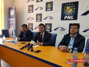Liberalii din Bacău au calculat cum ar fi afectate companiile Dedeman, Agricola și Tehnostrade de măsurile PSD
