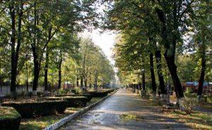 EXCLUSIV: Verdict în dosarul angajatului Primăriei Bacău, găsit mort în parc. Ce spun procurorii despre cauza morții