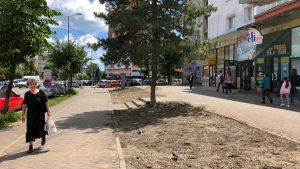 FOTO! Primăria, acuzată că distruge spațiul verde din oraș. Edilii susțin că lucrările de reamenajare vor continua