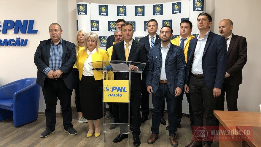 alegeri Parlamentul european pnl bacau 2019